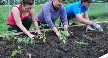 New Riverdale Community Salad Bowl Garden open for business